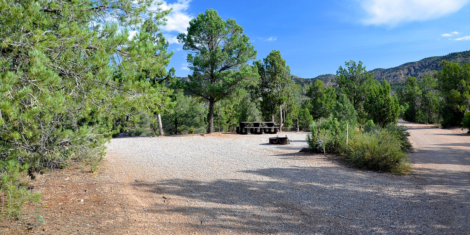 A photo of Beaver Dam State Park. Blue skies, clean looking campground surrounded by pine trees.