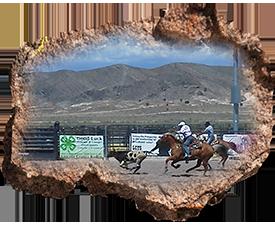 Cowboying-Rodeos