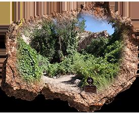 Hiking-Caliente-Rattlesnake-Loop-Trail