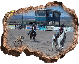 Lincoln-County-Fair-Rodeo