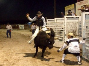 lincoln-county-fair-and-rodeo