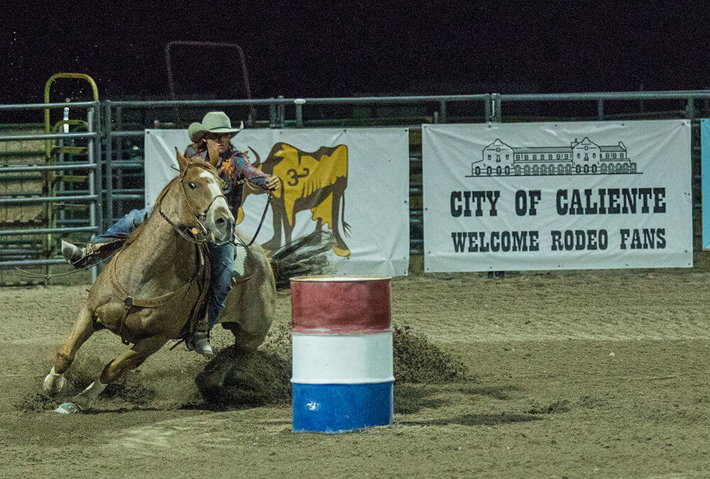 LC Record: County Fair and Rodeo in the Books